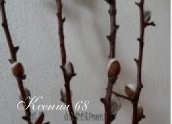 Ксения 68 - Как из фисташек сделать веточки вербы.