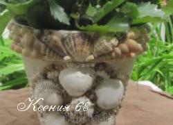 Ксения 68 - Декор цветочного горшка ракушками