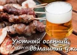 Ксения 68 - Блюда с использованием пива