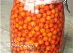 Ксения 68 - Полезная рябина
