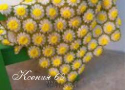 Ксения 68 - Ромашковый плед крючком