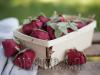 Ксения 68 - Овощи и фрукты из фетра