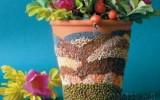 Ксения 68 - Украшение цветочного горшка мозаикой из семян