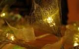 Ксения 68 - Светильники из скелетированных листьев