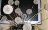 Ксения 68 - Букет воздушных одуванчиков