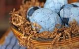Ксения 68 - Пасхальные яйца, украшенные кусочками джинсовой ткани. МК