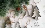Ксения 68 - Ёлочные украшения из формочек для печенья
