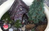 Ксения 68 - Мини-сады в цветочных горшках