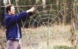 Ксения 68 - Сплетем гигантскую паутину для сада