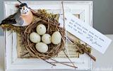 Ксения 68 - Панно с птичкой и гнездом из виноградных усиков. МК