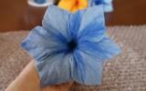 Ксения 68 - Цветы. Мокрое валяние. Мастер класс