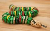Ксения 68 - Змея из крышек