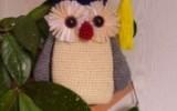 Ксения 68 - Ученая сова. Украшение банки