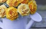 Nushell - Розы из бумаги