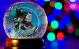 Юлия-Михаэль - Дед Мороз на гусе