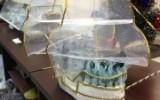 galunya2009 - Кораблик с гостинцами