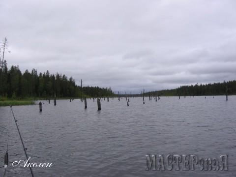 После чего нам показали места и мы стали туда ездить рыбачить, затопленные участки леса Кундозеро, там щука ходила наверное стаями