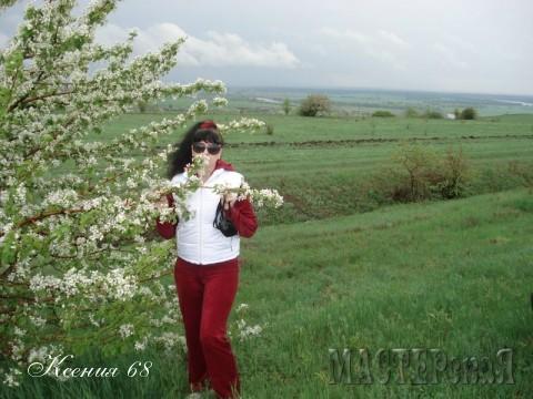 Красота необыкновенная. Это я стою у цветущего абрикосового дерева.