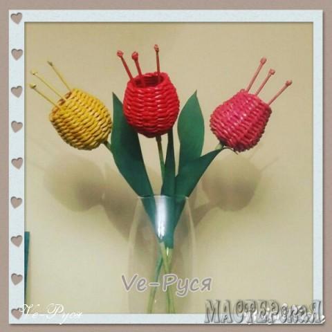 Цветы декоративные - Тюльпаны