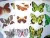 Ксения 68 - Бабочки из пластиковых бутылок