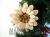 Ксения 68 - Красивый цветок из семян тыквы