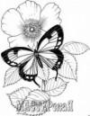 Ксения 68 - Трафареты бабочек и гусениц