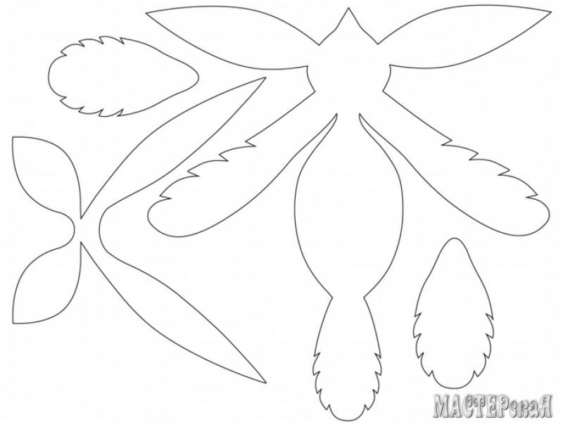Объемная птица из бумаги шаблоны для вырезания
