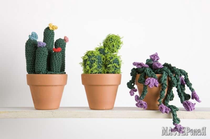 Эти вязаные кактусы красивы